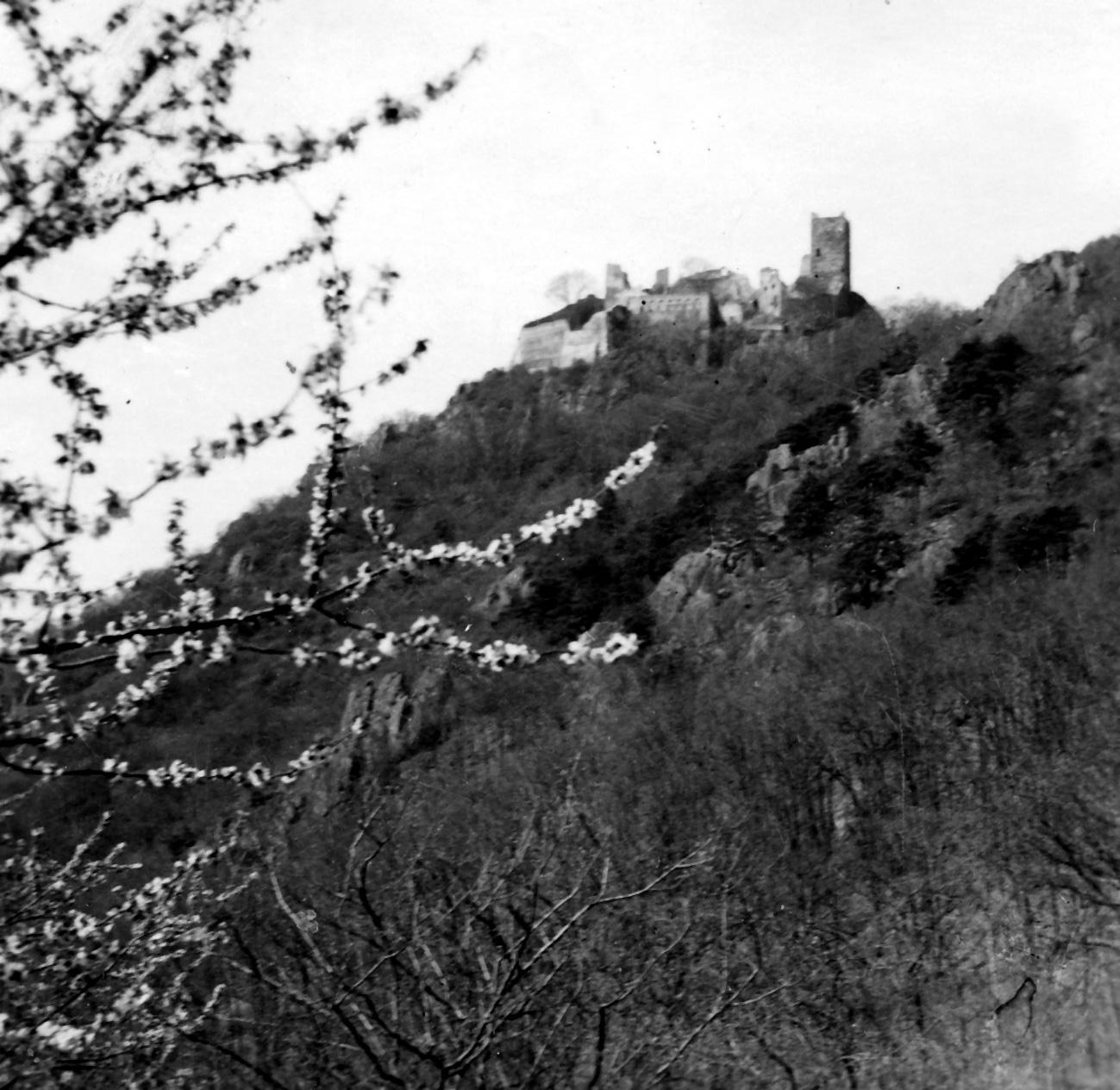 1942 thannenkirch-6